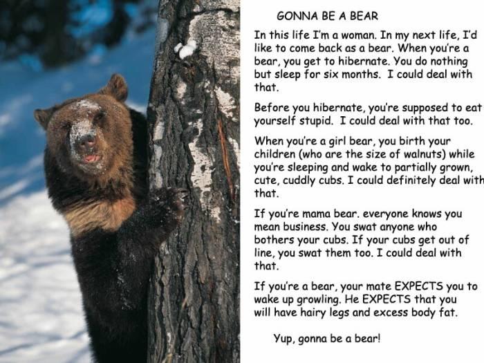 Gonna Be A Bear