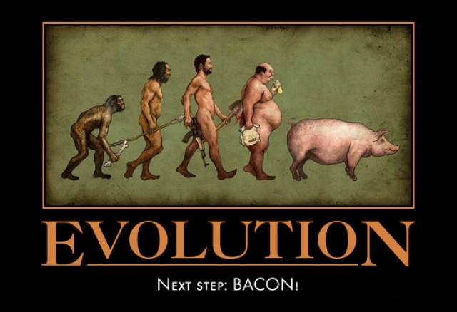 Evolution (Bacon)