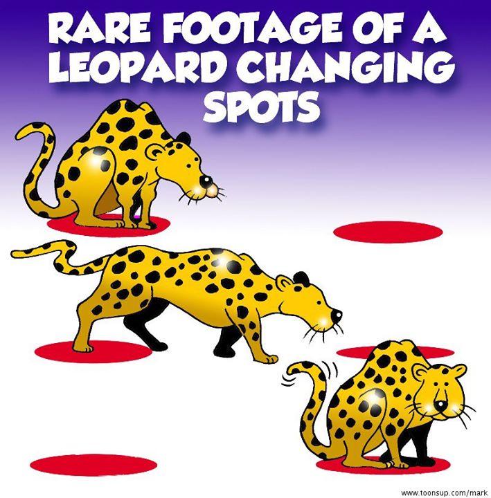 Leopard Changing Spots