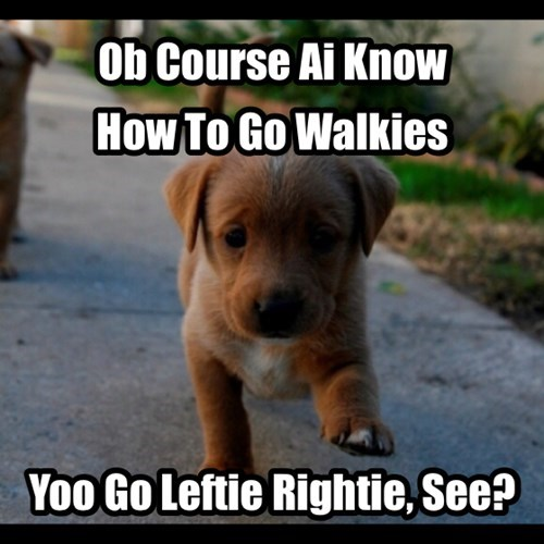 How to go Walkies