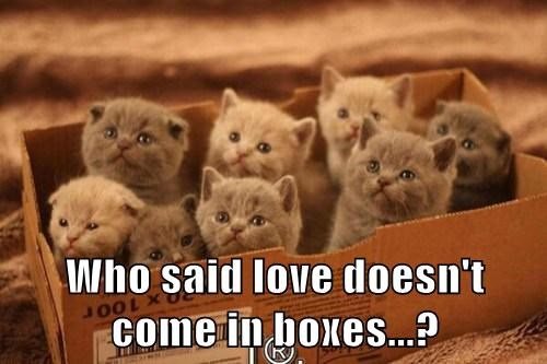 Who said love doesn't come in boxes?