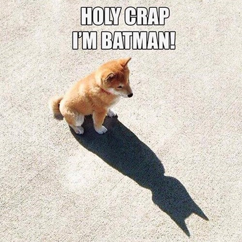 Holy Crap!  I'm Batman!