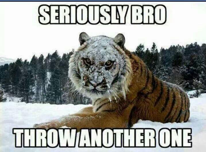 Seriously, Bro!