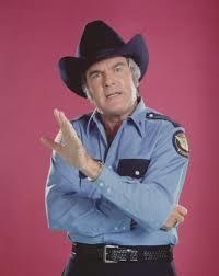 James Best as Sheriff Rosco P. Coltrane