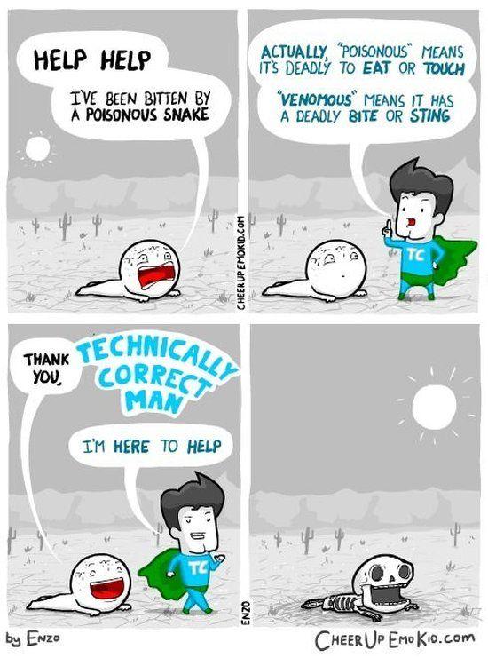 technically_correct